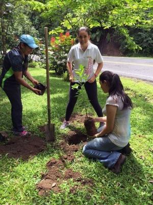 Tabacón 5.jpg