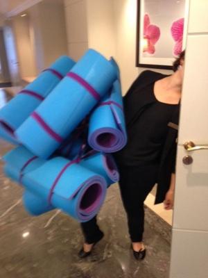 Trianon Palace Yoga mats door GWD France 2015.JPG