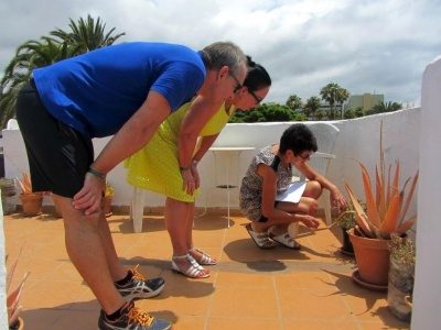 GWD Gran Canaria Plants Lecture .jpg