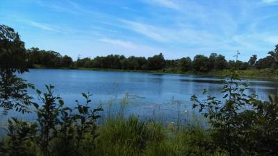 Lake 5.jpg