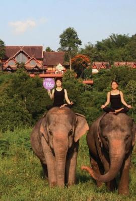 Anantara Yoga June 2015 Anantara Golden Triangle Elephant Camp & Resort Thailand.jpg